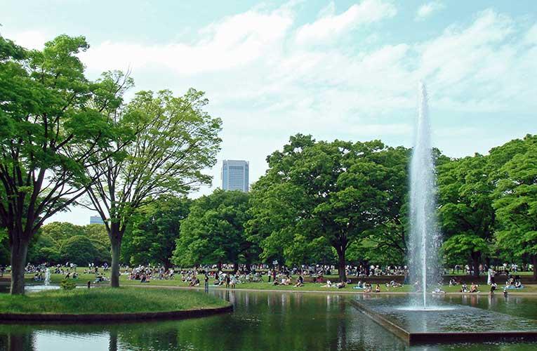 yoyogi parque harajuku
