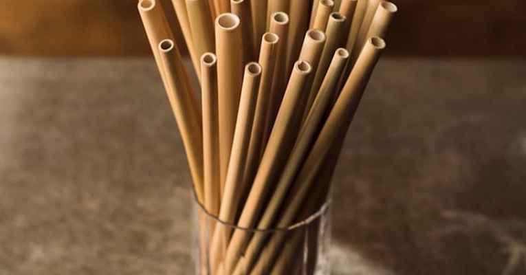 Canudos de bambu