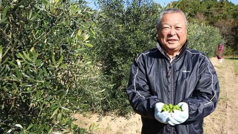 Chiba com azeitonas verdes nas mãos