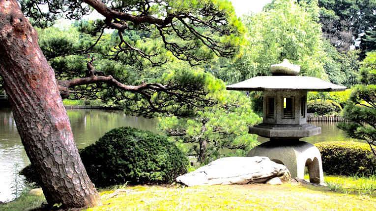 Bosque da universidade Waseda
