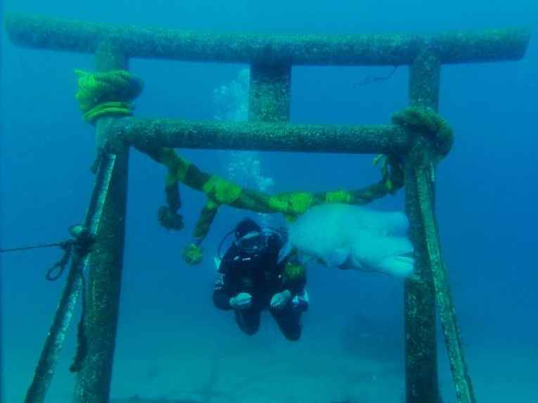 Torii no fundo do mar