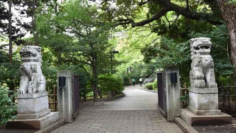 Entrada Waseda