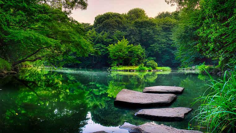 Lago Sanshiro dentro da universidade japonesa de Tokyo