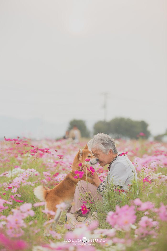 Avó e cachorro em meio a flores