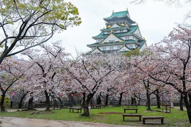 Jardim do castelo de Osaka