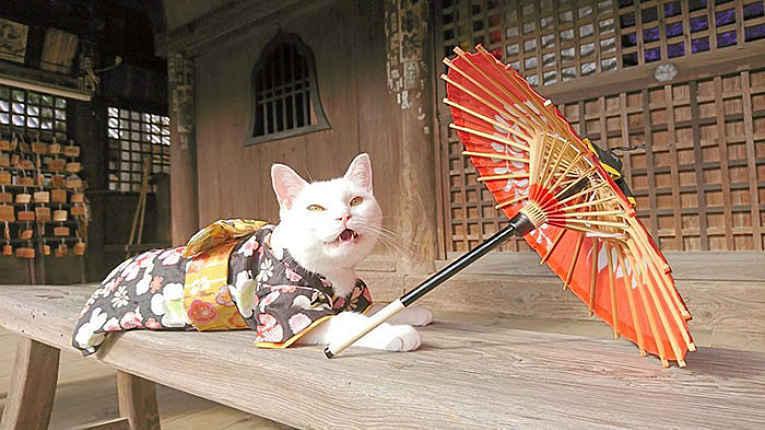 Koyuki de kimono