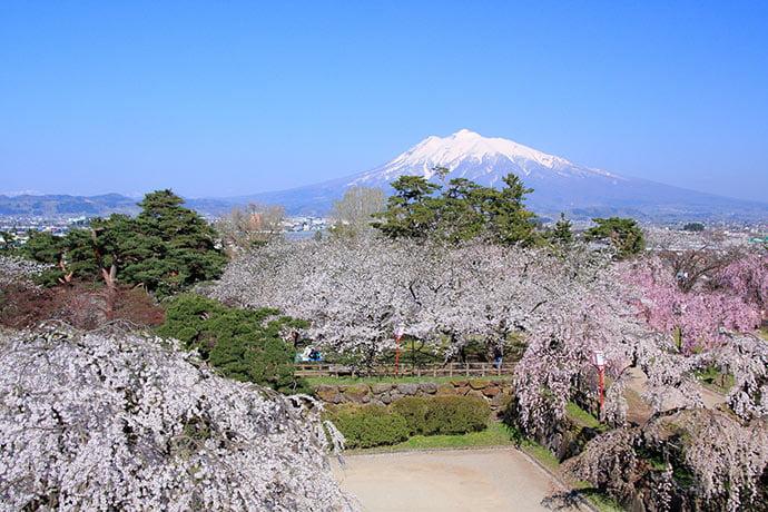 Monte Iwaki ao fundo do parque