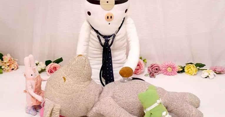 Hospital de bicho de pelúcia